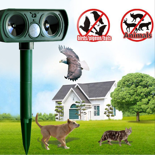 Solar powered animal repeller