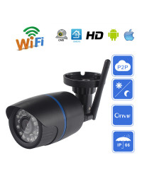 Wireless IP Camera P2P Camera