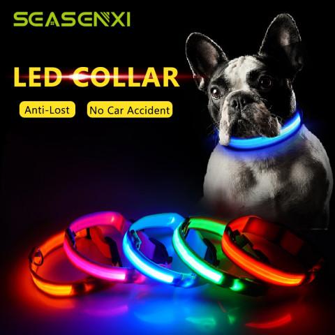 LED halsbånd til hunden