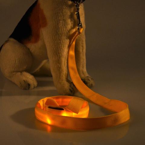 LED Rope Belt for dog