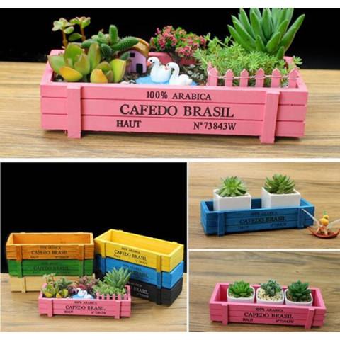 Garden Plant Vintage Succulent Wooden Crate