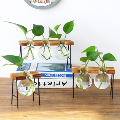 Hanging Desktop Glass Planter Bulb Vase with Wooden Stand